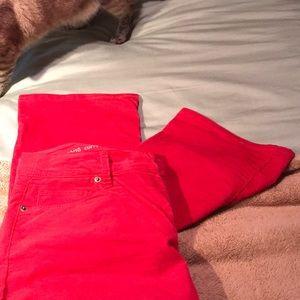 LOFT Pants - 30/10 curvy boot cut AT Loft Corduroys, poppy red